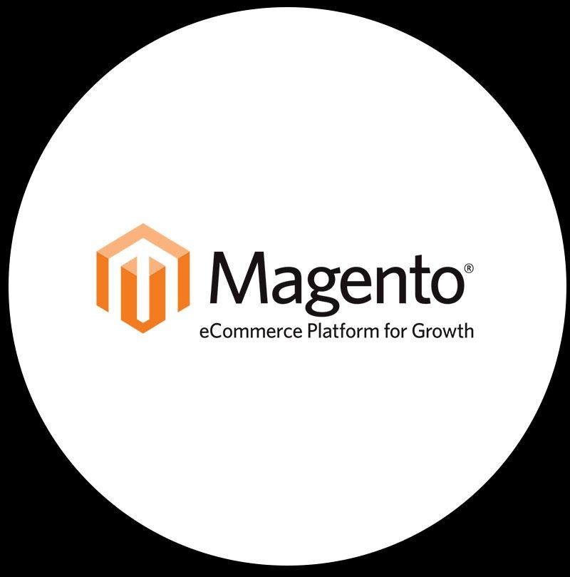Magento Web Developers